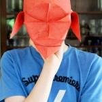 20130615_7378-Frederik-mit-Maske